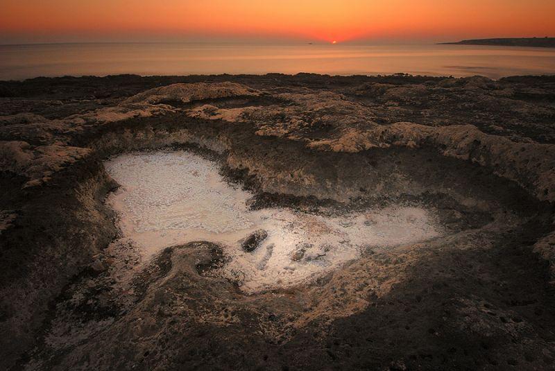 salty dawn